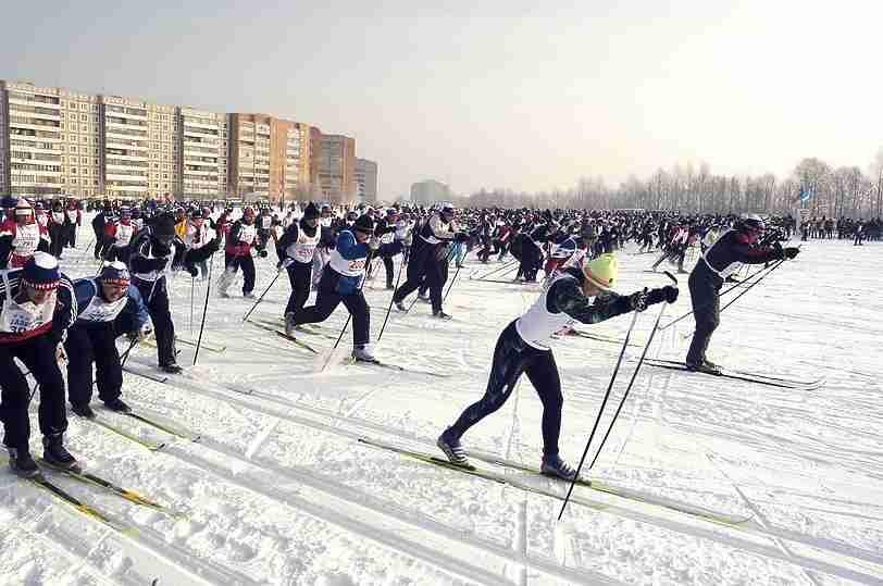 ВПензе «Лыжня России» вновь пройдет варбековском лесу